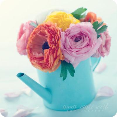 Kastelukannu ja kukat