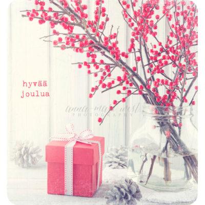 Punaiset marjat lahjapaketti joulukortti West