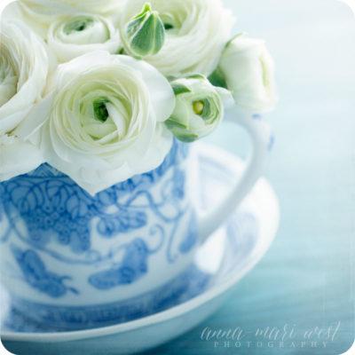 Sinivalkoiset kukat tekstiton kortti West