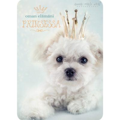 Oman-elämäni-prinsessa