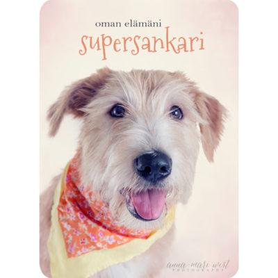 Oman-elämäni-supersankari