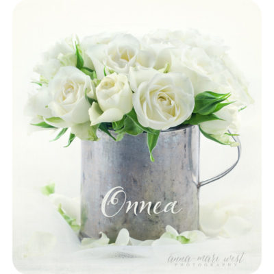 Valkoiset-ruusut