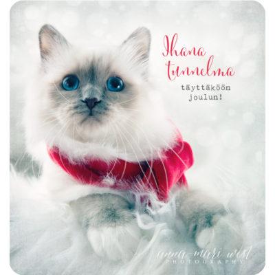 Kissan-joulutervehdys