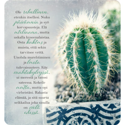 Osta-kaktus