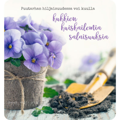 Kukkien-kuiskailemat-salaisuudet